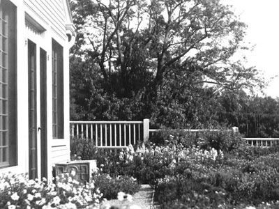 Terrace garden and study, 1959 Beatrix Farrand Society Archives